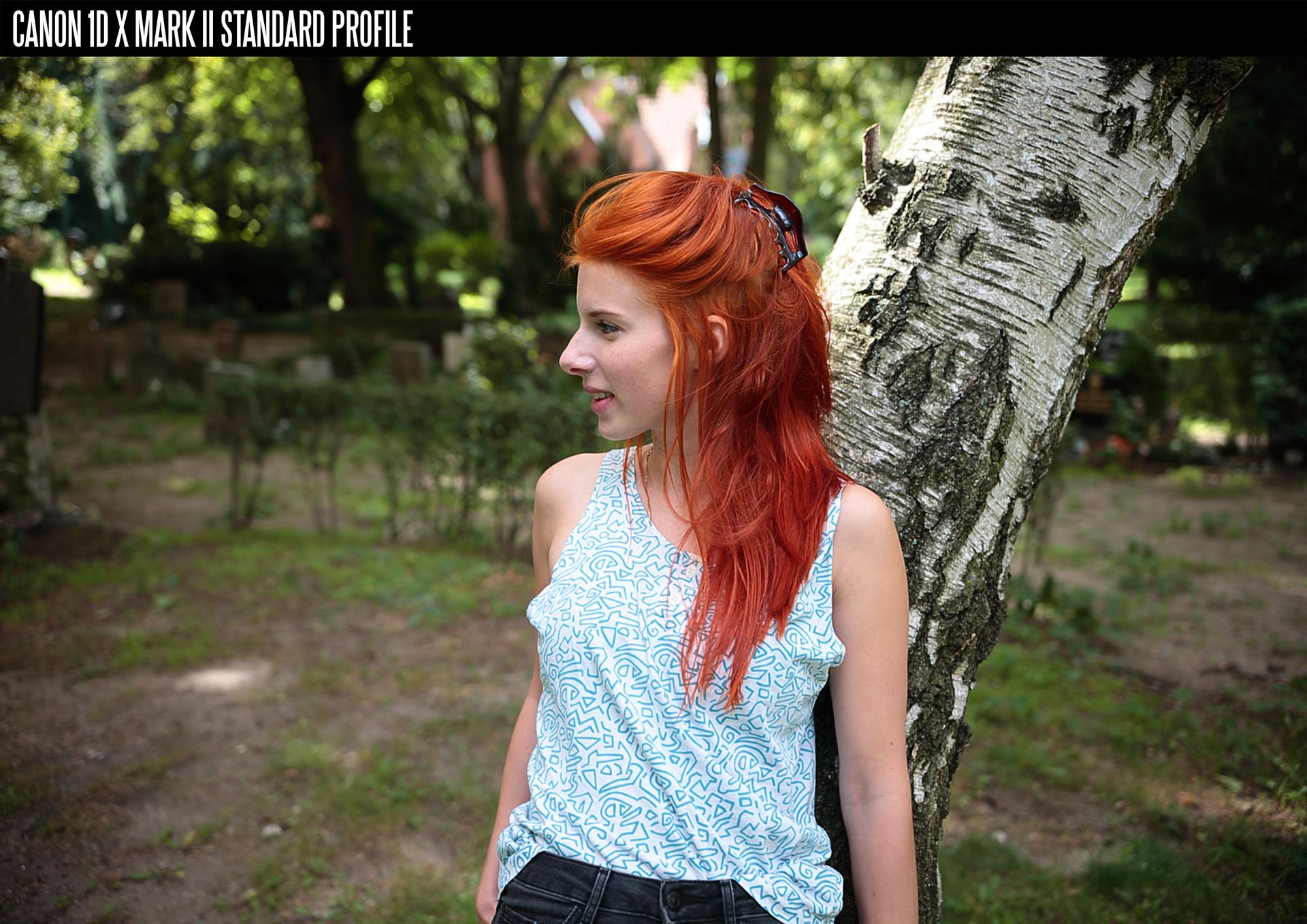 Download Picture Style Untuk Canon 600d - matessoft-asoft