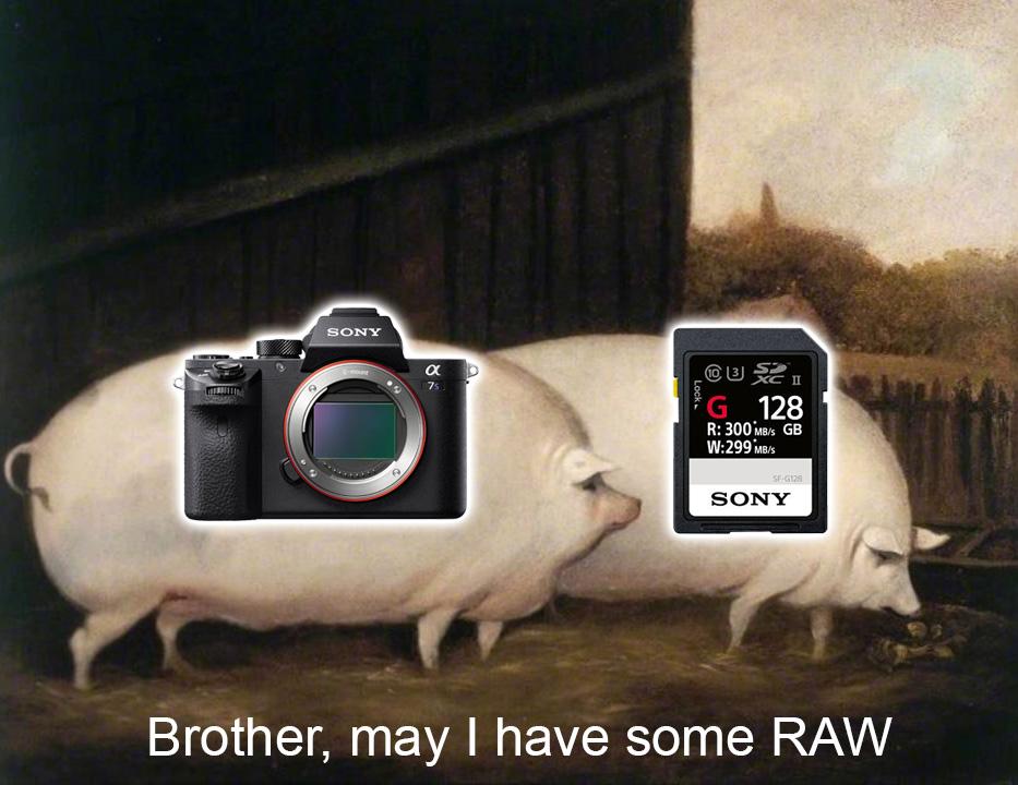brother-raw-a7s-ii.jpg