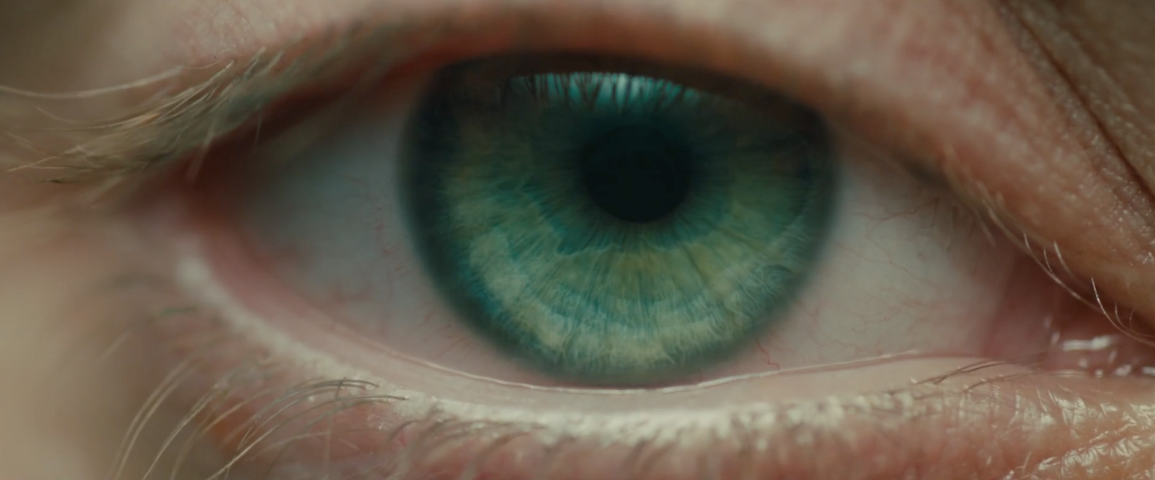 Blade Runner 2049 trailer and a first look at Roger ...