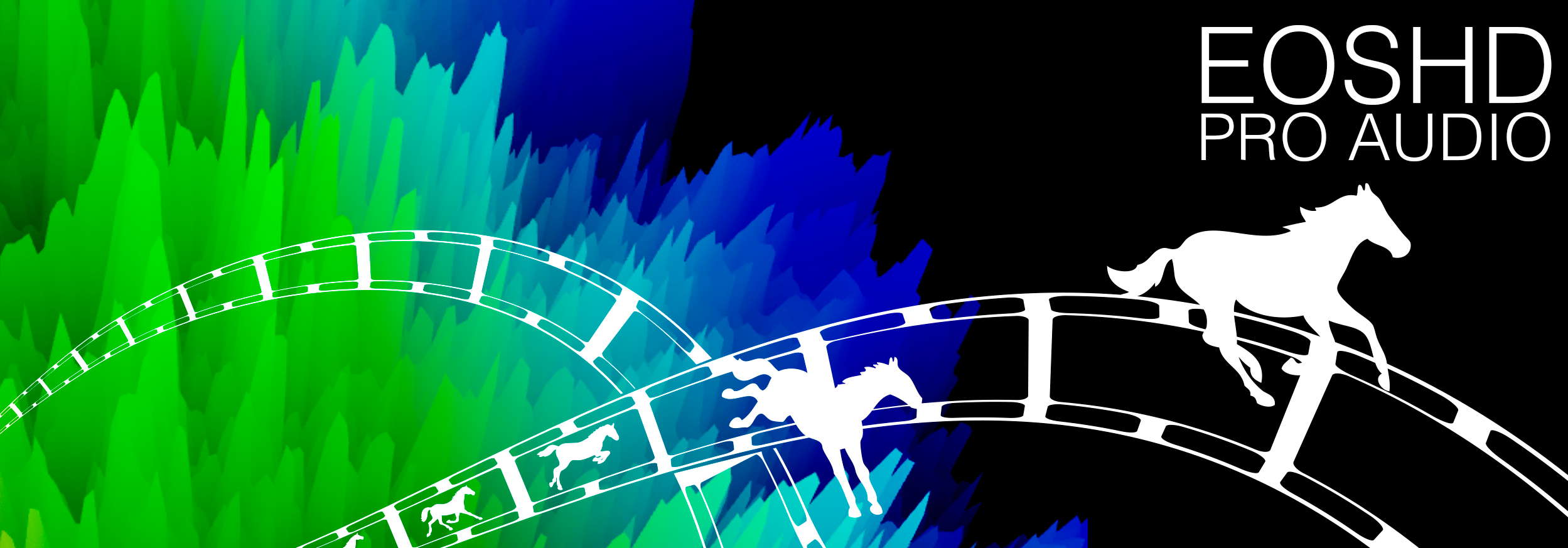 EOSHD-Pro-Audio-Banner-V4.png